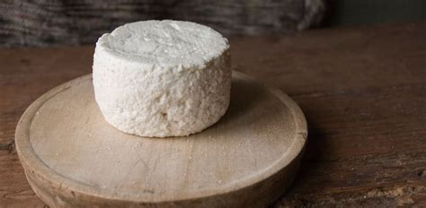 imagenes queso blanco culture the word on cheese