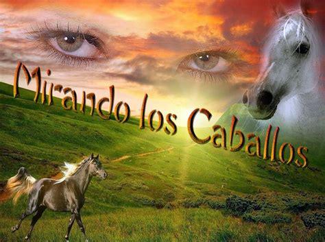caballo cogida brutal por detras caballo que precioso amigo nos dio la naturaleza taringa