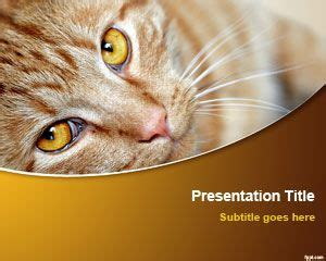 Cat Powerpoint Template by Free Cat Powerpoint Template