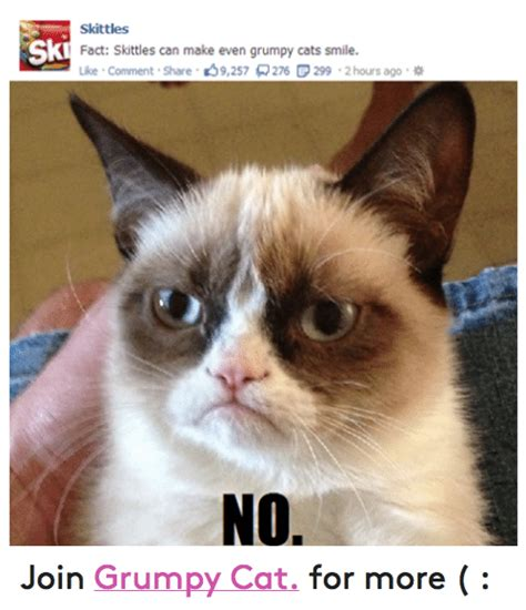 grumpy cat joins cats on skittles ski fact skittles can make even grumpy cats smile