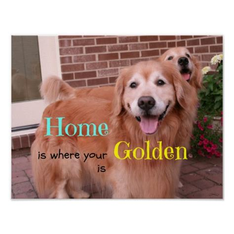 golden retriever quotes golden retriever quotes and sayings quotesgram