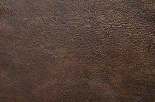 Leather Brown by 3 A Leathers Gallery Interiors By Svetlana Shellshear