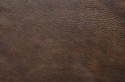 Brown Leather by 3 A Leathers Gallery Interiors By Svetlana Shellshear