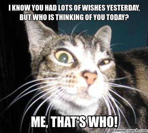 Late Birthday Meme - belated birthday cat memes image memes at relatably com