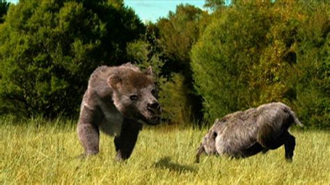are bears related to dogs prehistoric related keywords prehistoric keywords