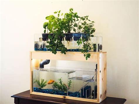 indoor planter garden  plants aquarium decoration