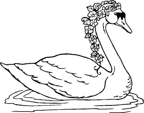 swan coloring pages animals poultry quot swan quot coloring books to print