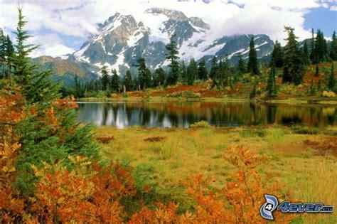 Aire De Jeux Bois 1187 by Parc National Des Cascades