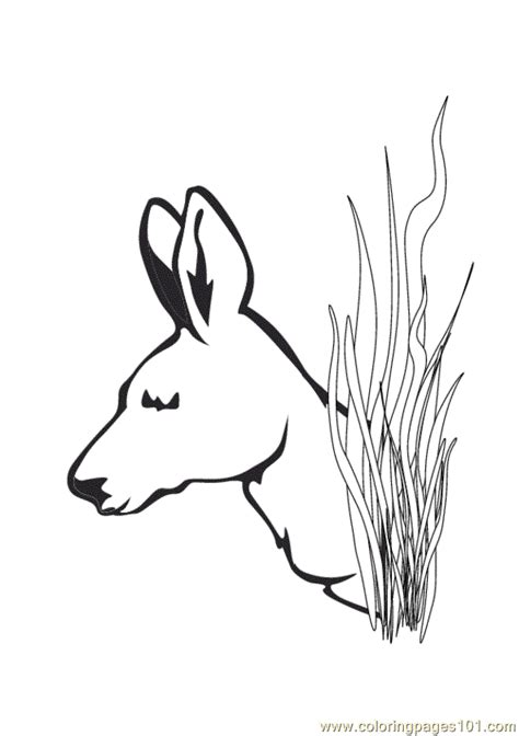 free a deer head coloring pages