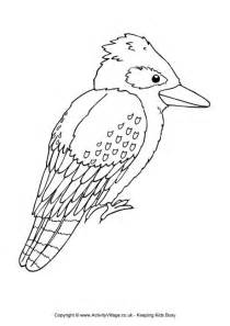 Kookaburra Colouring Page  With Word sketch template