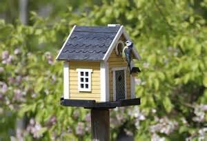 cool bird house plans top 46 amazing stylish unique birdhouse designs