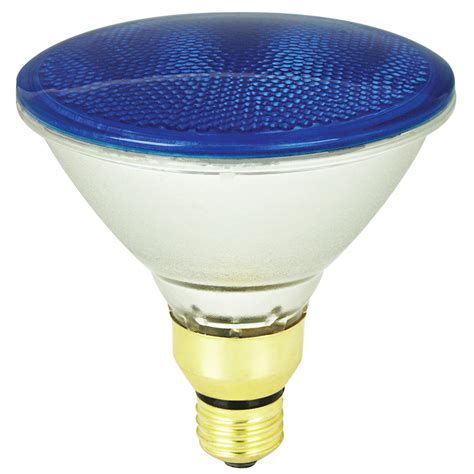 Outdoor Lighting Bulbs Shop Mood Lites 90 Watt Par38 Medium Base E 26 Blue Outdoor Halogen Flood Light Bulb At Lowes