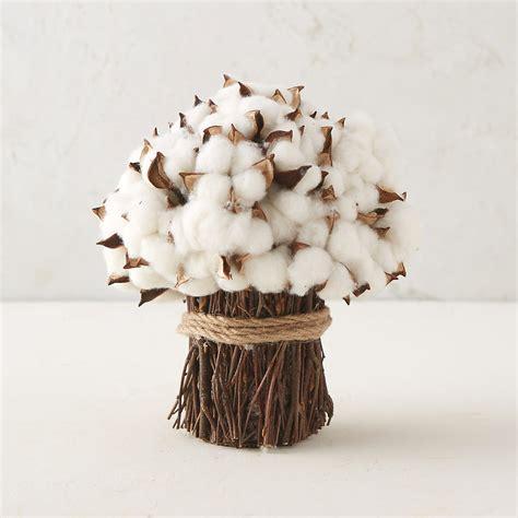dried cotton stem bouquet terrain
