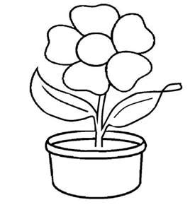 sketsa bunga sketsa gambar bunga matahari  pot