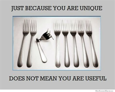 Unique Means by Just Because You Are Unique Does Not Mean You Are Useful