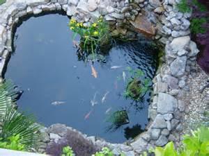 Koi pond basics furnish burnish
