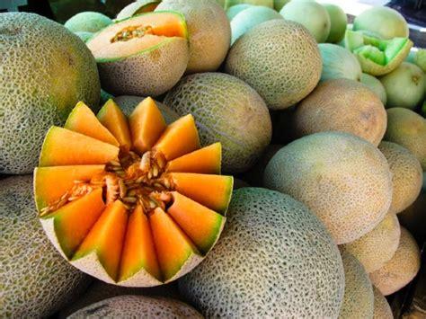 Cantaloupe Shelf by Market Driven Melon Food Gps