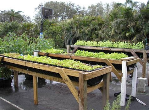 Elevated Vegetable Garden Elevated Vegetable Garden Beds Interior Design Ideas