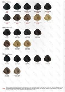 alfaparf color chart evolution alfaparf color chart related keywords