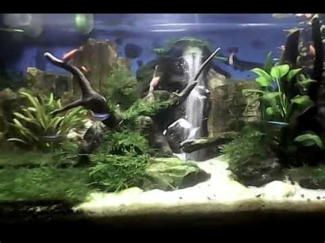 membuat air terjun aquascape youtube air terjun aquascape youtube