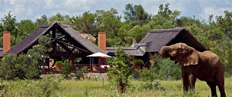 south africa family safari package family vacation packages south africa