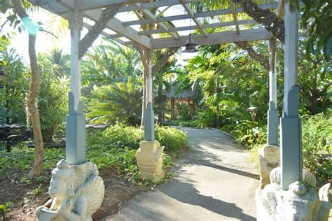 botanical gardens fl naples botanical garden fl top tips before you go with