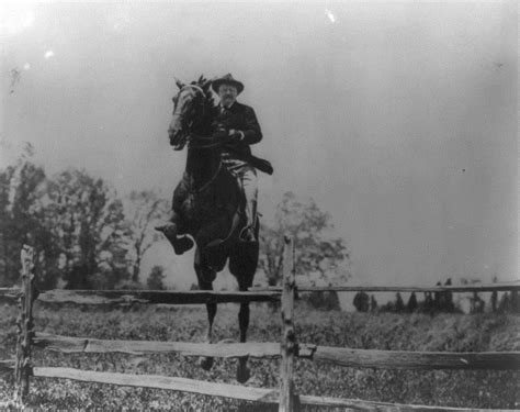that famous photo of teddy roosevelt riding a moose is fake politicians and their infamous riding fails horse nation
