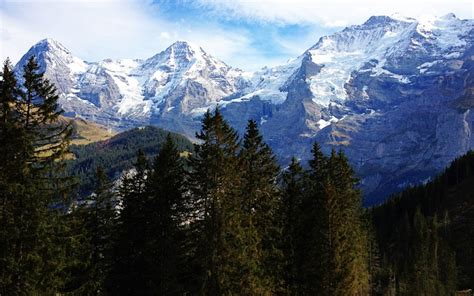 swiss alps swiss alps switzerland