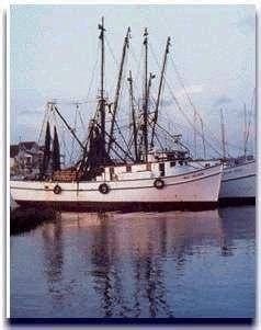 party boat fishing georgetown sc 37 best boats images on pinterest party boats boats and