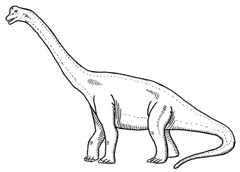 Brachiosaurus Coloring Page Free Coloring Pages Of Brachiosaurus by Brachiosaurus Coloring Page