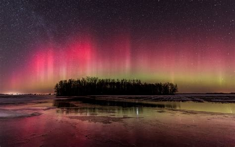 beautiful northern lights river trees night winter