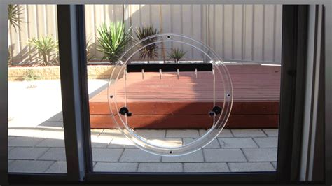 In Glass Pet Door Hartley Glass Adelaide Pet Doors
