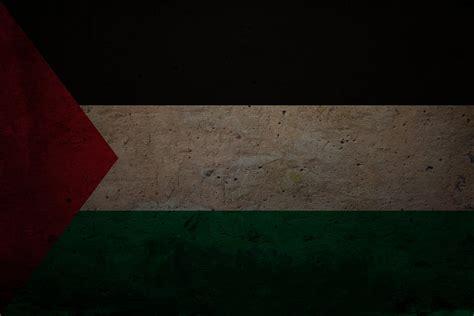 wallpaper hd palestine download wallpapers download 2560x1600 palestine flag