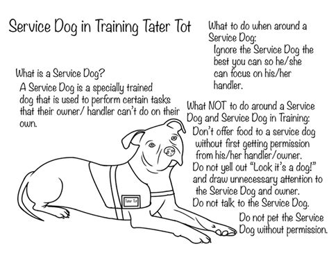 coloring pages of service dogs what every child needs to know about service dogs plus a