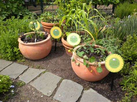 container gardening for food container gardens at phipps porchside gardening for