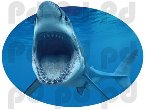 shark wall murals shark wall mural decal oceans wall decal murals