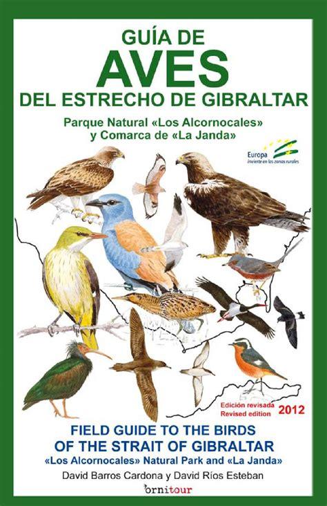 libro gua de aves guia de aves del estrecho edici 243 n revisada 2012 by birdcadiz issuu