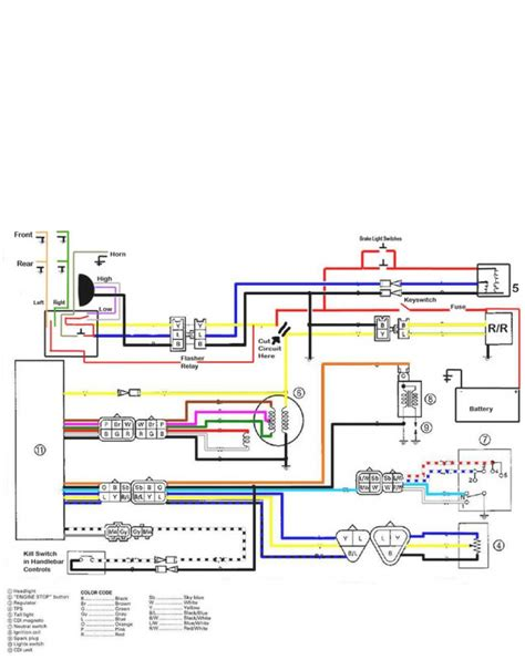 banshee wiring harness banshee engine wiring diagram