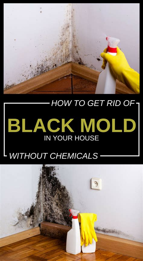 how to get rid of mold on walls in bathroom how to get rid of black mold in your house without