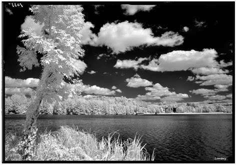 Lu Infrared Infrared And Ultraviolet Photography