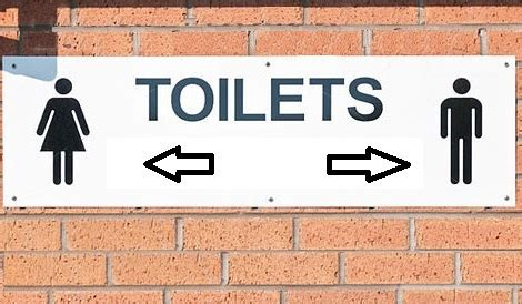 sesso nei bagni pubblici i maschi usino il bagno dei maschi la legge che
