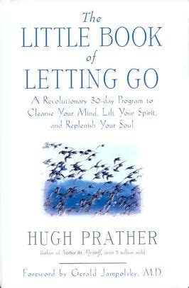 30 Days Detox Soul And Spirit by The Book Of Letting Go A Revolutionary 30 Day