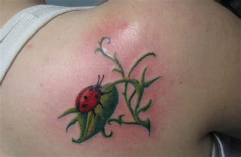 lady bug tattoo shanninscrapandcrap ladybug tattoos