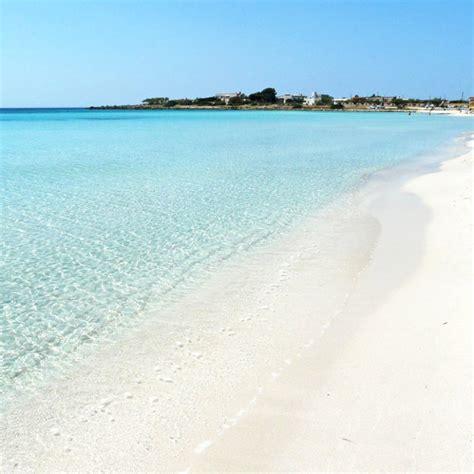 porto cesareo immagini spiaggia di punta prosciutto spiagge porto cesareo