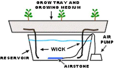 New Pot Hidroponik Wick System Mei simple hydroponics the wick system