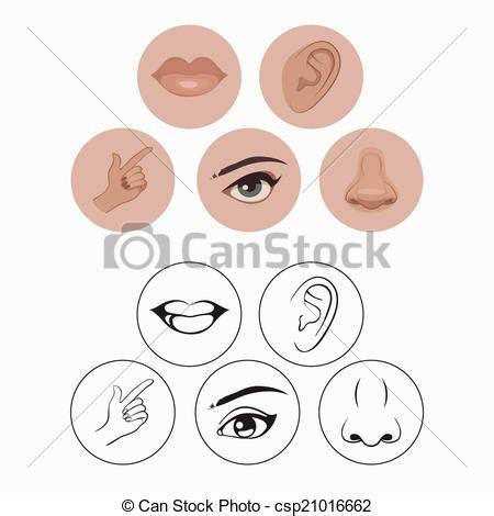 imagenes de ojos nariz boca y orejas 5 感覚 鼻 唇 目 耳 そして 手 csp21016662のクリップアートベクター クリップ
