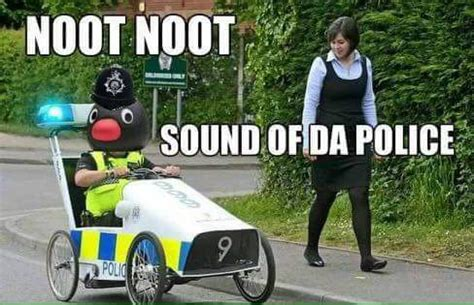 Noot Noot Meme - memedroid images tagged as pingu page 1
