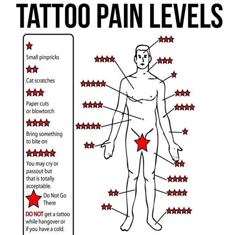 tattoo pain chart imgur musely