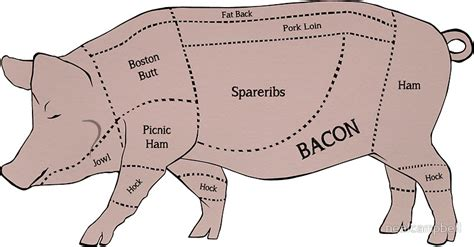 what part of the pig does bacon come from diagram quot parts of a pig with emphasis on bacon quot stickers by