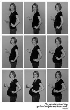 30 mejores imágenes de etapas del embarazo | Stages of